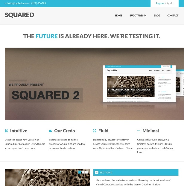 squared-responsive-wordpress-theme