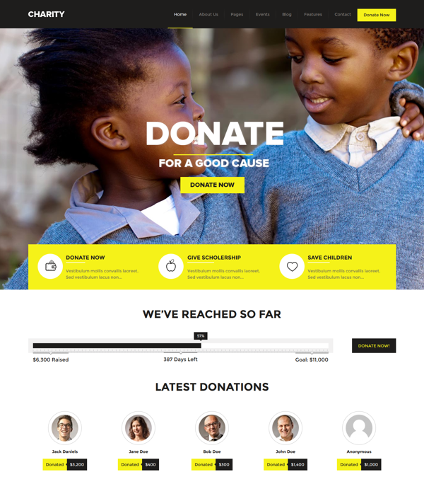 charity-foundationfundraising-wordpress-theme