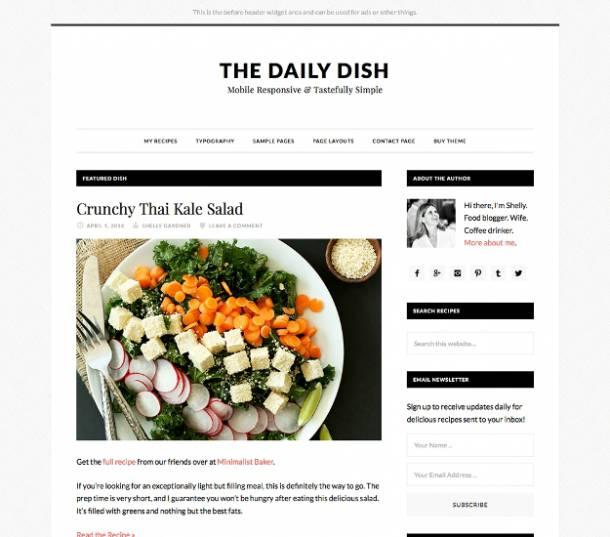 daily dish genesis theme