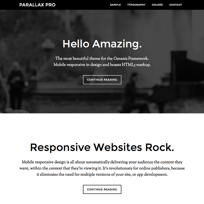 parallax-pro-responsive-wordpress-theme
