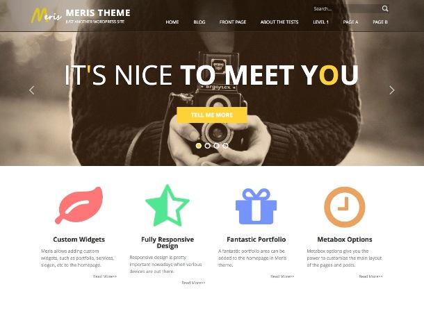 meris-free-portfolio-theme