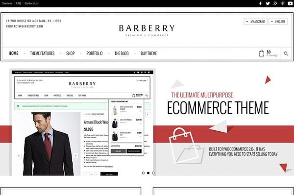 Barberry WordPress theme