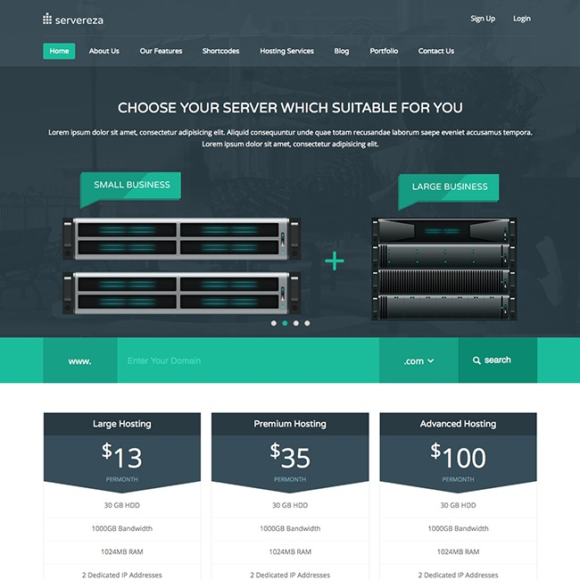 servereza-hosting-wordpress-theme