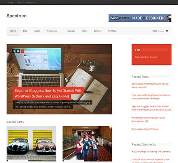 Spectrum SEO WordPress Theme