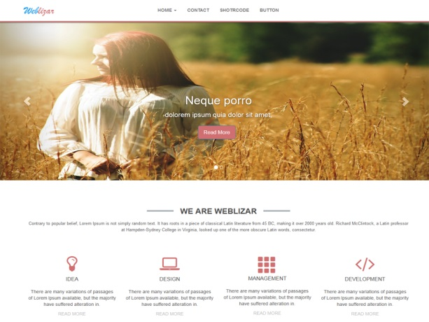 weblizar-brown WordPress theme