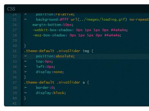 Custom CSS WordPress Plugin