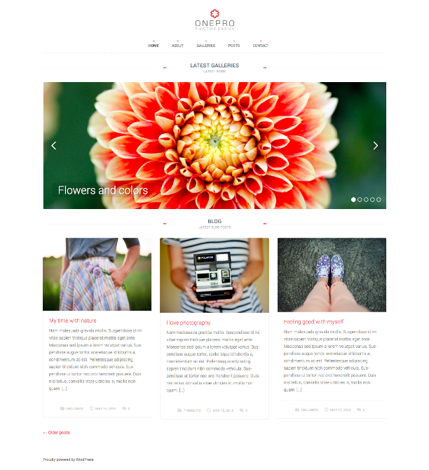 Onepro Minimal Photography WordPress Theme