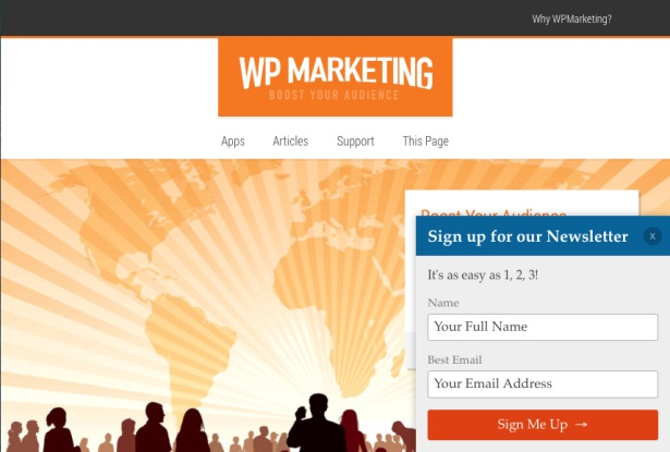 WP Marketing form placement