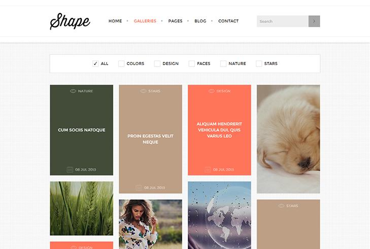Shape Portfolio