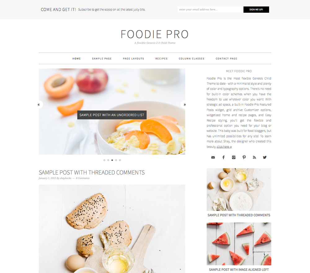 Foodie Pro theme home page